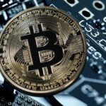 What are the Global Drivers of Bitcoin Adoption?